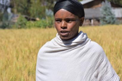 BENEFIT-REALISE woldia university farmer Ennana.jpg